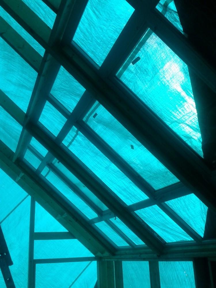 Best Laid Plans-Our Venture into Aquaponics (3/4)