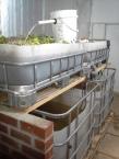 Greenhouse AP tank set
