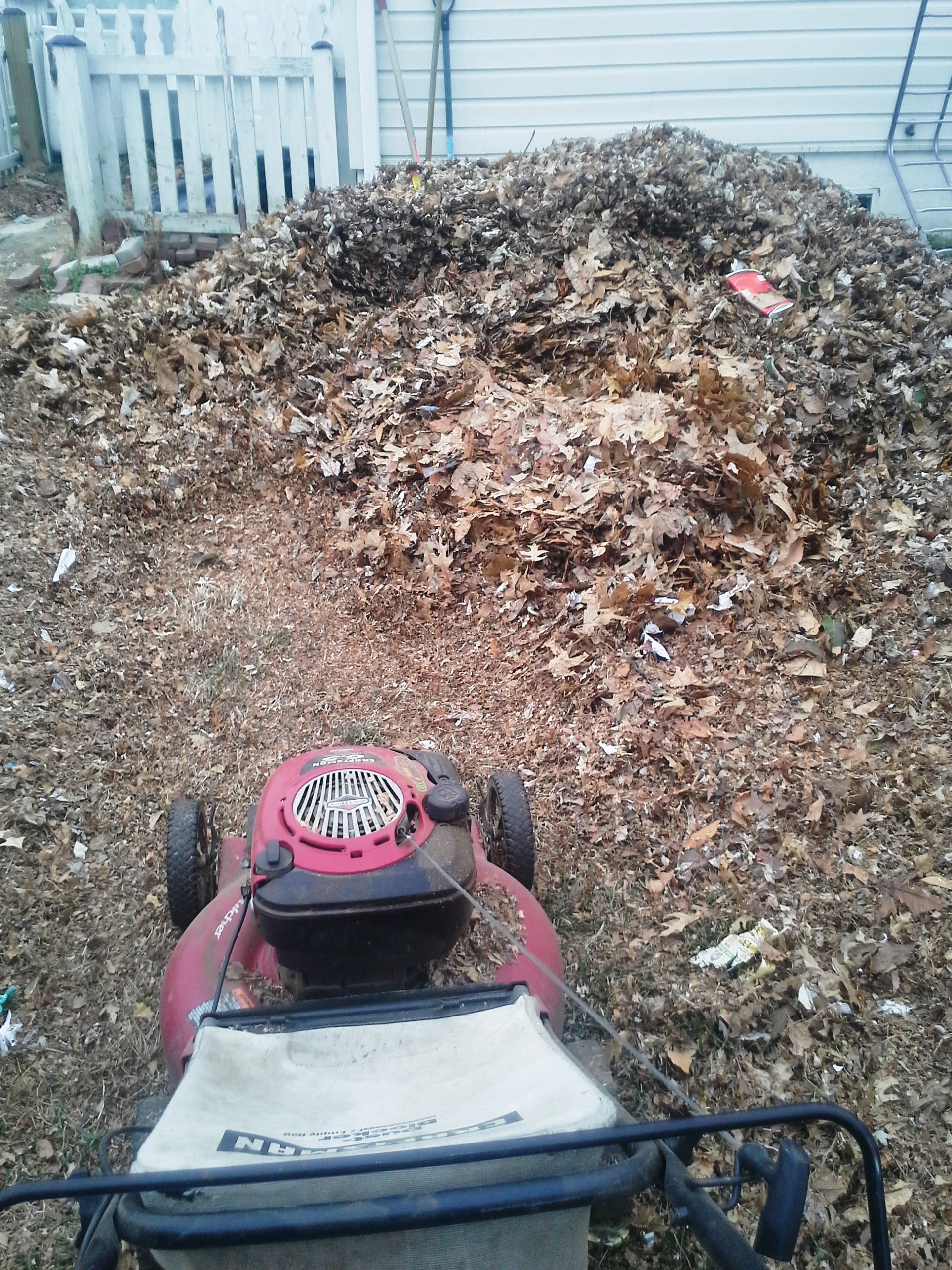 how to keep neighbors leaves out of my yard