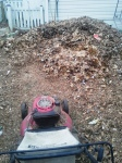 Mulching the leaves and grass from neighbors.