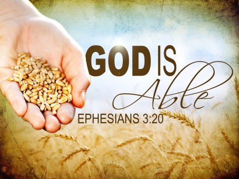 Eph320
