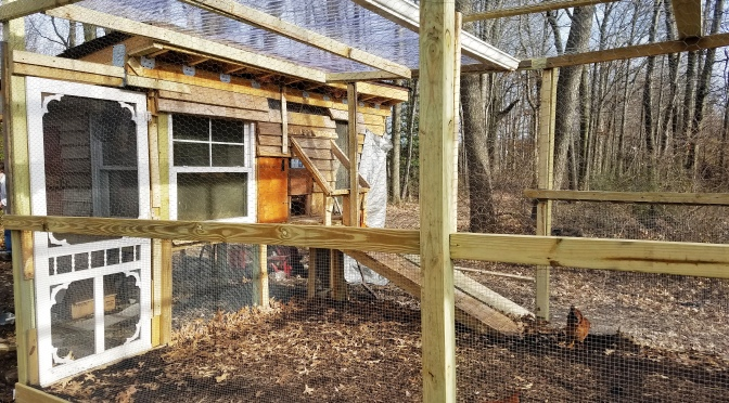 Priorities & the Chicken Coop 2.0